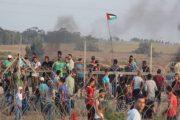 3 إصابات بين الفلسطينيين برصاص العدو الاسرائيلي شمال قطاع غزة