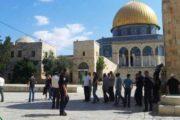 ألف مستوطن يقتحمون قبر يوسف وسط مواجهات مع قوات العدو الإسرائيلي