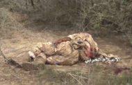 مقتل 10 من العسكريين السعوديين والمرتزقة غرب ساحل ميدي قبالة جيزان