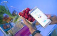 أول هاتف ذكي في العالم يعرف عدد السعرات الحرارية في الطعام