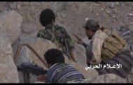 مصرع وإصابة العشرات من المرتزقة بعمليات نوعية للجيش واللجان بالجوف