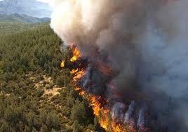 23 قتيلاً على الأقل جراء حرائق هائلة اجتاحت كاليفورنيا
