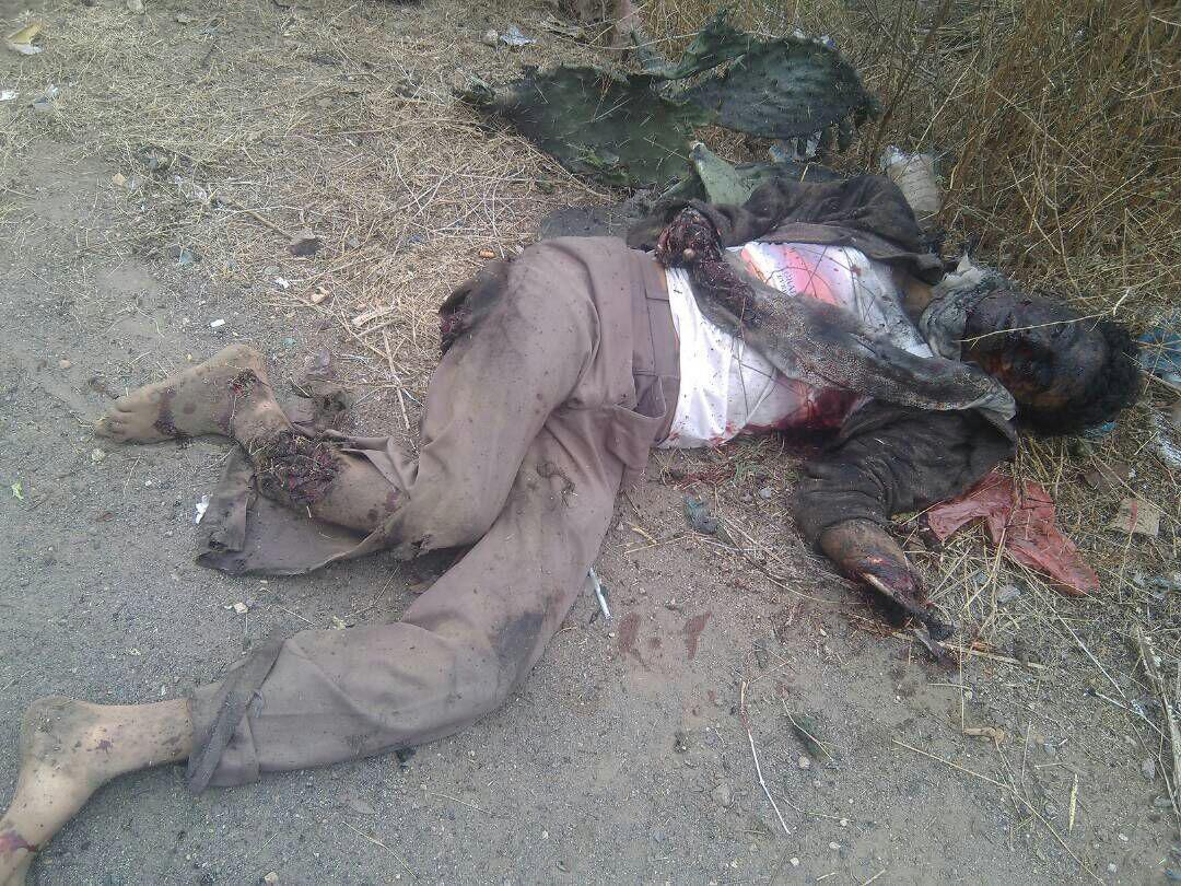 افشال عملية انتحارية بمحافظة إب