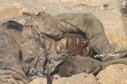 الإعلام الحربي يوزع صور من مشاهد لانكسار زحوفات المرتزقة على جبل الشعير قبالة منفذ علب بعسير (صور + فيديو)